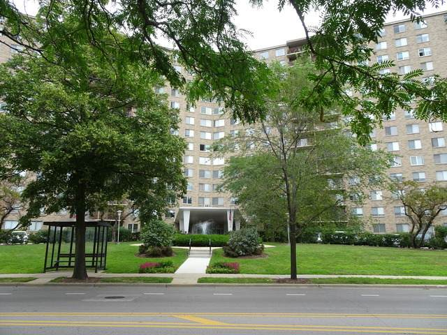 6833 N Kedzie Avenue N #214, Chicago, IL 60645 (MLS #10799176) :: John Lyons Real Estate