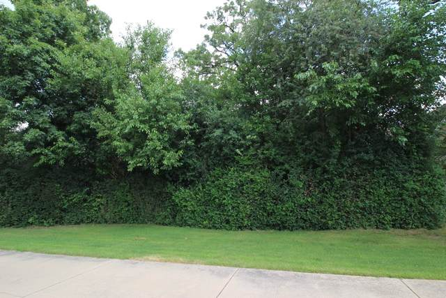 Lot 10 Shade Tree Circle, Lakewood, IL 60014 (MLS #10799240) :: The Spaniak Team