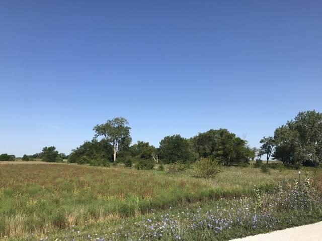 00 600 EAST Road, Loda, IL 60948 (MLS #10799817) :: BN Homes Group