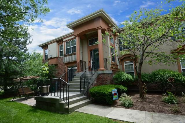 301 De Pinto Circle, Bloomingdale, IL 60108 (MLS #10799971) :: John Lyons Real Estate