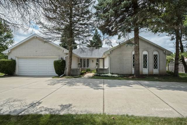 503 Frankie Court, Prospect Heights, IL 60070 (MLS #10800061) :: Angela Walker Homes Real Estate Group
