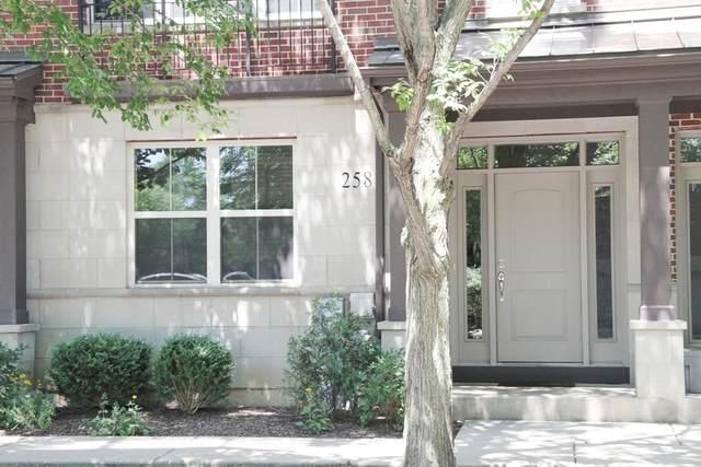 258 Alpine Springs Drive, Vernon Hills, IL 60061 (MLS #10800521) :: John Lyons Real Estate