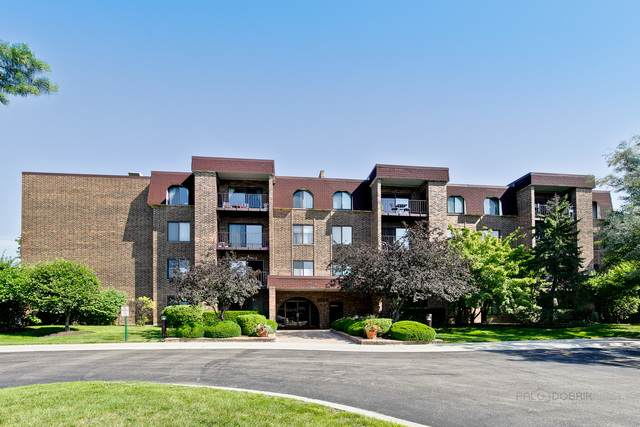 2100 Valencia Drive 306B, Northbrook, IL 60062 (MLS #10800677) :: John Lyons Real Estate