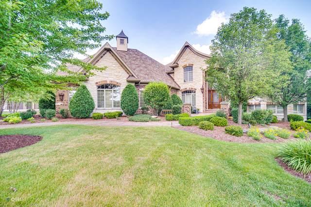 18595 S Pineprairie Drive, Mokena, IL 60448 (MLS #10801079) :: O'Neil Property Group