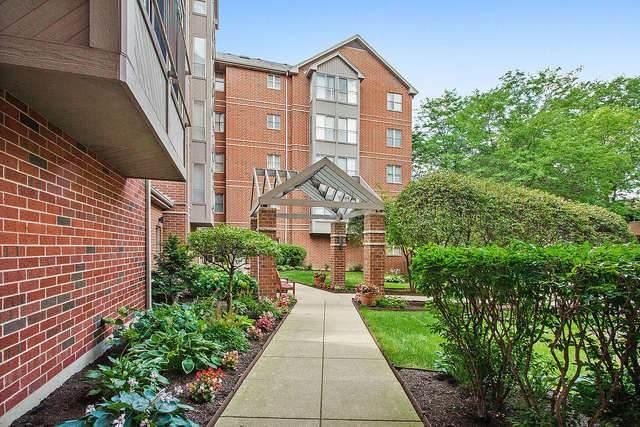 27 E Hattendorf Avenue #414, Roselle, IL 60172 (MLS #10801134) :: John Lyons Real Estate