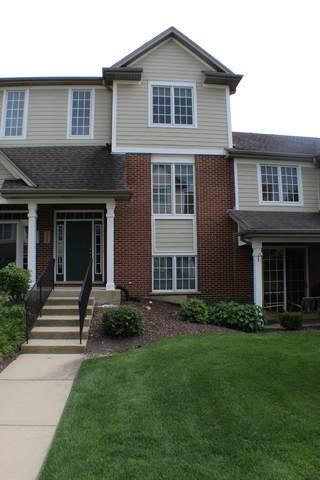 10650 Gabrielle Lane, Orland Park, IL 60462 (MLS #10801264) :: Littlefield Group