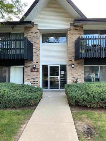 5B Kingery Quarter #207, Willowbrook, IL 60527 (MLS #10801451) :: The Mattz Mega Group