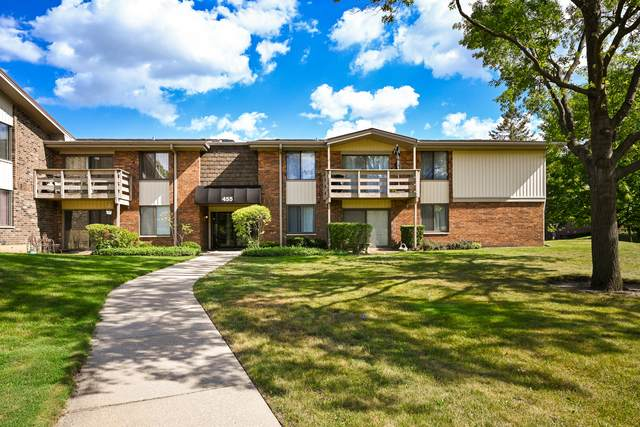 455 Raintree Court 2-D, Glen Ellyn, IL 60137 (MLS #10801457) :: John Lyons Real Estate