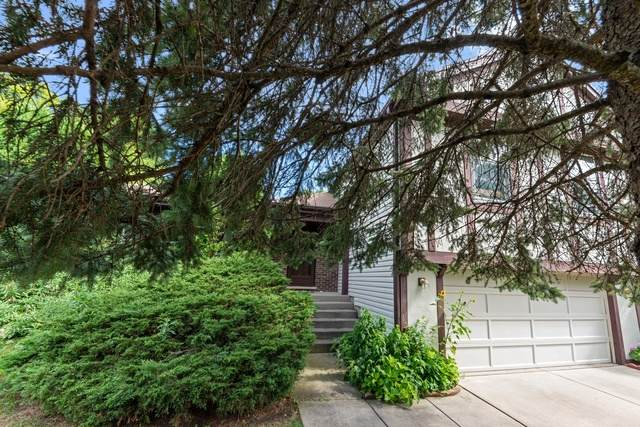 228 Annapolis Drive, Vernon Hills, IL 60061 (MLS #10801662) :: Angela Walker Homes Real Estate Group