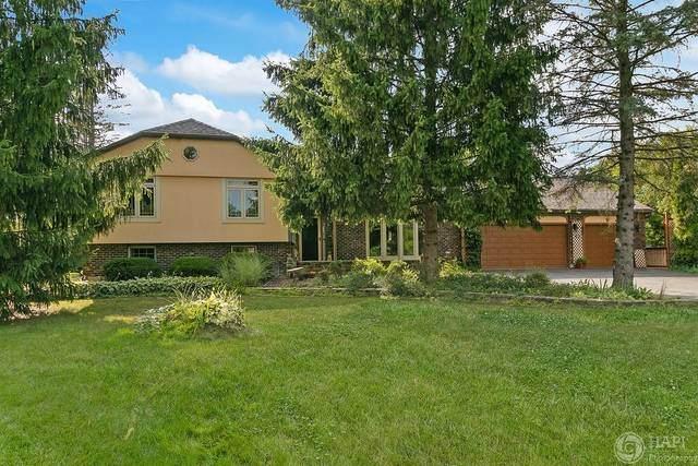 26194 N Ann Court, Wauconda, IL 60084 (MLS #10801815) :: Angela Walker Homes Real Estate Group