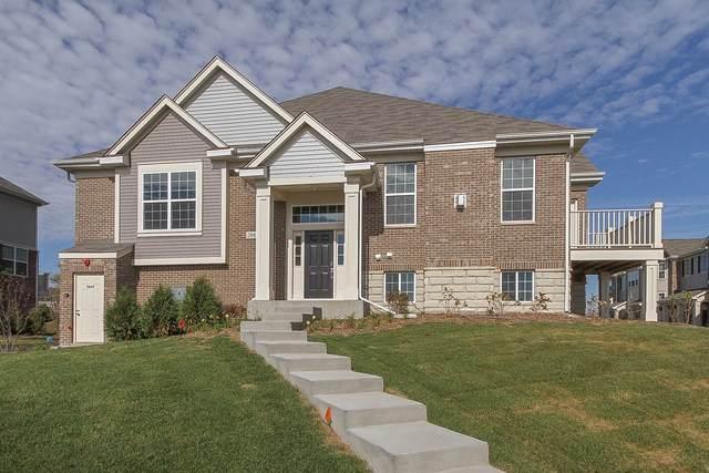 4403 Monroe Lot #10.01 Court, Naperville, IL 60564 (MLS #10801824) :: Littlefield Group