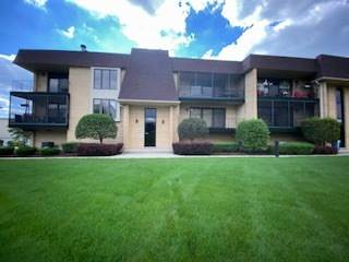 15705 Old Orchard Court 1N, Orland Park, IL 60462 (MLS #10801830) :: John Lyons Real Estate