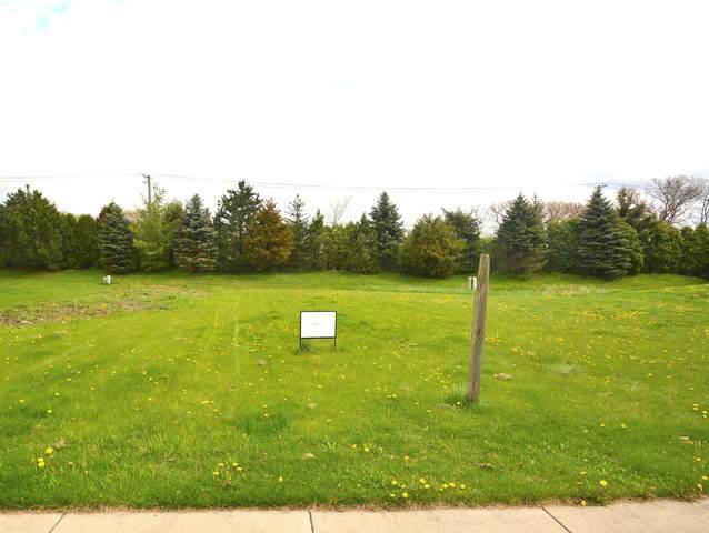 883 E Writer Court, Vernon Hills, IL 60061 (MLS #10802121) :: Angela Walker Homes Real Estate Group
