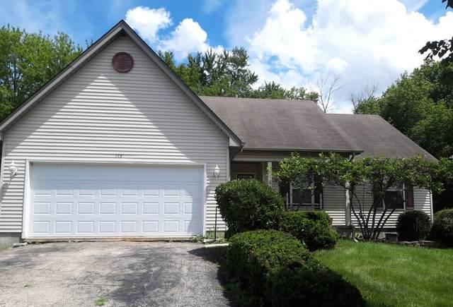 113 Shawnee Lane, Harvard, IL 60033 (MLS #10802347) :: Helen Oliveri Real Estate