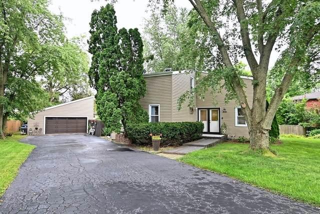 144 John Street, New Lenox, IL 60451 (MLS #10802575) :: Property Consultants Realty