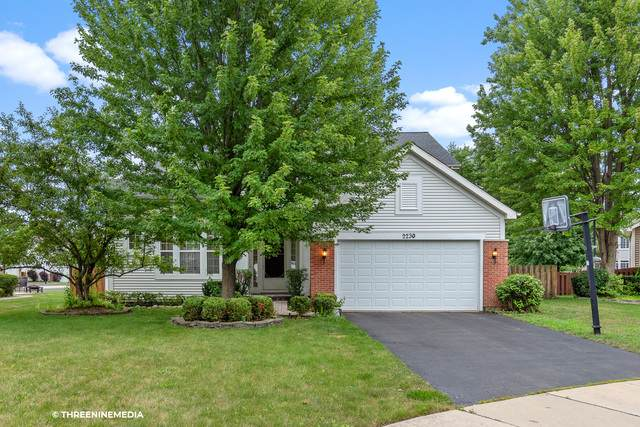 2230 Apple Hill Court S, Buffalo Grove, IL 60089 (MLS #10802613) :: Angela Walker Homes Real Estate Group
