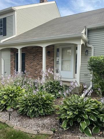 2s761 Grove Lane, Warrenville, IL 60555 (MLS #10802635) :: The Wexler Group at Keller Williams Preferred Realty
