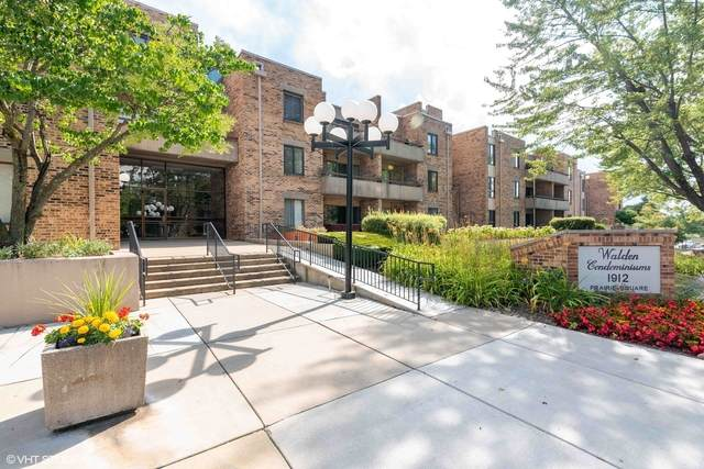 1912 Prairie Square #216, Schaumburg, IL 60173 (MLS #10802663) :: The Wexler Group at Keller Williams Preferred Realty