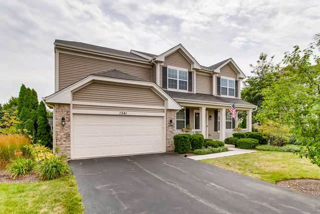 1341 Newport Court, Pingree Grove, IL 60140 (MLS #10802746) :: Angela Walker Homes Real Estate Group