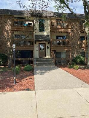 22516 S Jackson Court 5D, Richton Park, IL 60471 (MLS #10802912) :: Angela Walker Homes Real Estate Group