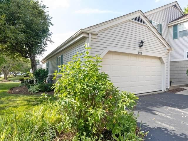 723 Mallard Drive, Marengo, IL 60152 (MLS #10803389) :: Littlefield Group