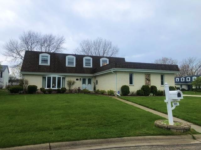 680 Fern Court, Schaumburg, IL 60193 (MLS #10803525) :: The Wexler Group at Keller Williams Preferred Realty