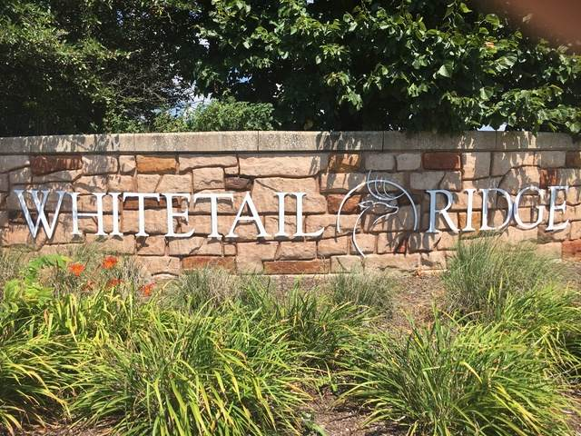 5704 Water's Edge, Lot 230 Court, Yorkville, IL 60560 (MLS #10803720) :: O'Neil Property Group
