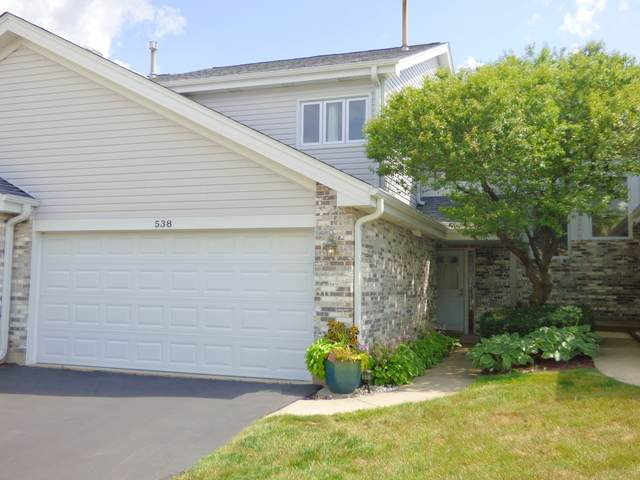 538 Stone Gate Circle, Schaumburg, IL 60193 (MLS #10803872) :: The Wexler Group at Keller Williams Preferred Realty