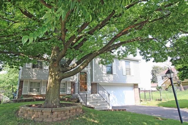 815 Rodenburg Road, Roselle, IL 60172 (MLS #10803937) :: John Lyons Real Estate