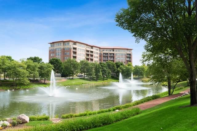 40 Prairie Park Drive #203, Wheeling, IL 60090 (MLS #10804050) :: Helen Oliveri Real Estate