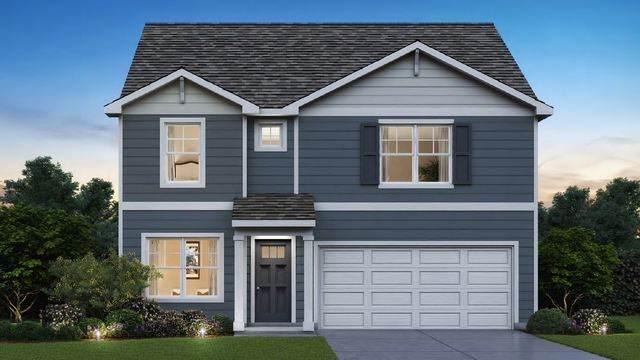 1472 Hollow Tree Lane, Pingree Grove, IL 60140 (MLS #10804258) :: Angela Walker Homes Real Estate Group