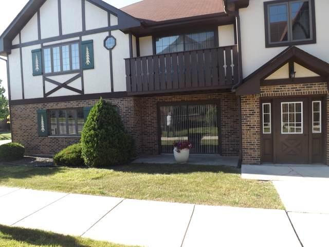 11559 E Autobahn Drive E #101, Palos Park, IL 60464 (MLS #10804296) :: John Lyons Real Estate