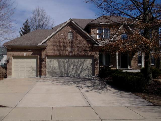 24656 Jolee Court, Plainfield, IL 60544 (MLS #10804839) :: RE/MAX IMPACT