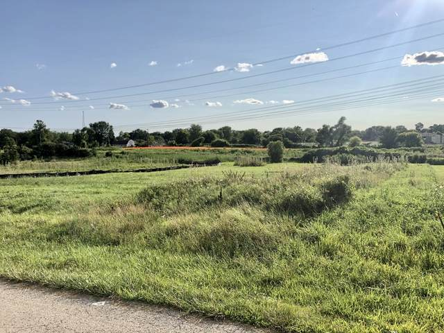 18030 Conlee Drive, Mokena, IL 60448 (MLS #10806569) :: O'Neil Property Group