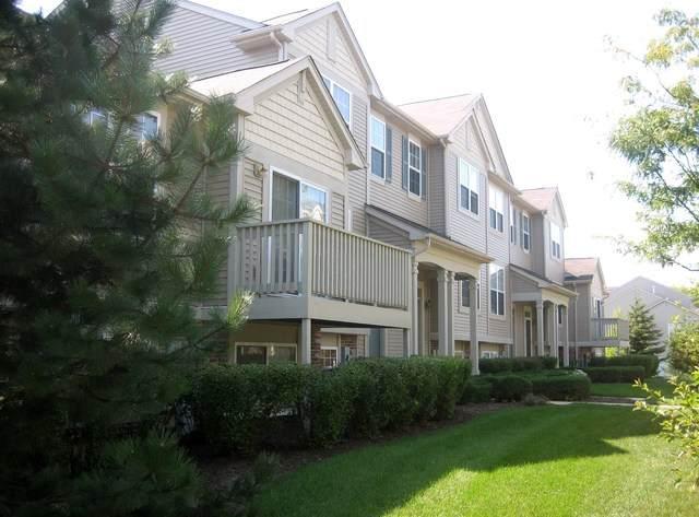 1051 Chadwick Drive, Grayslake, IL 60030 (MLS #10806650) :: Littlefield Group