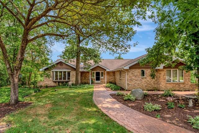19751 Woodside Drive, New Lenox, IL 60451 (MLS #10806833) :: The Wexler Group at Keller Williams Preferred Realty