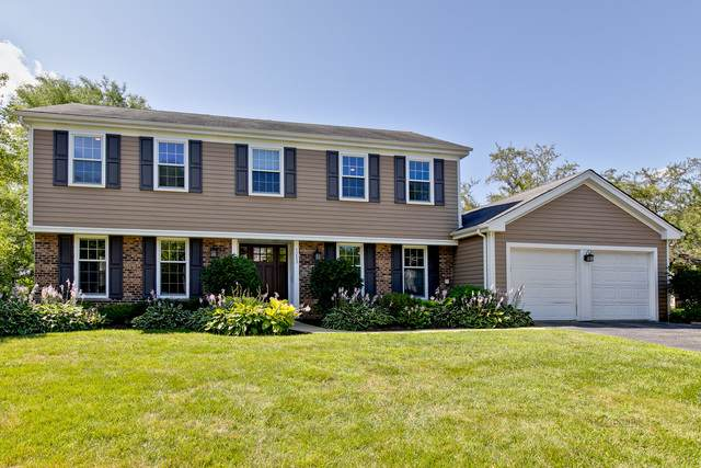 1253 W Illinois Avenue, Palatine, IL 60067 (MLS #10806988) :: John Lyons Real Estate
