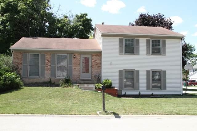 1025 Shambliss Court, Buffalo Grove, IL 60089 (MLS #10807078) :: John Lyons Real Estate