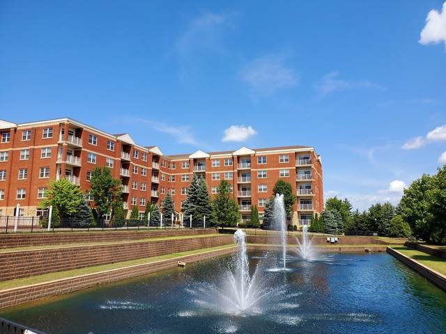 1 Itasca Place #208, Itasca, IL 60143 (MLS #10807259) :: John Lyons Real Estate