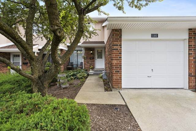 1182 Leicester Court, Wheaton, IL 60189 (MLS #10807379) :: Ani Real Estate