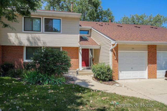 244 Winding Oak Lane #244, Buffalo Grove, IL 60089 (MLS #10807485) :: John Lyons Real Estate