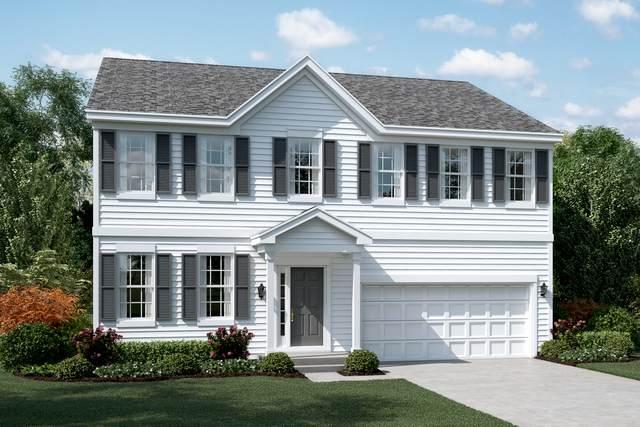 181 Willowwood Drive, Oswego, IL 60543 (MLS #10807625) :: Jacqui Miller Homes