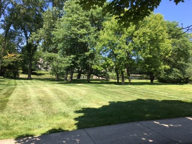 LOT 51 Kajer Lane, Lake Forest, IL 60045 (MLS #10807768) :: BN Homes Group