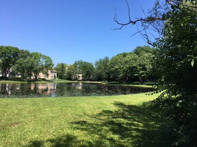 LOT 50 Kajer Lane, Lake Forest, IL 60045 (MLS #10807774) :: BN Homes Group