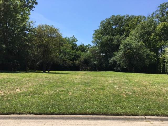 LOT 22 Kimmer Court, Lake Forest, IL 60045 (MLS #10807787) :: Jacqui Miller Homes