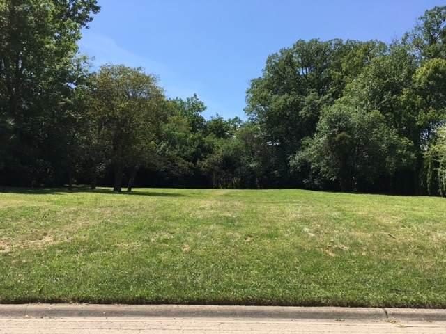 LOT 22 Kimmer Court, Lake Forest, IL 60045 (MLS #10807787) :: John Lyons Real Estate
