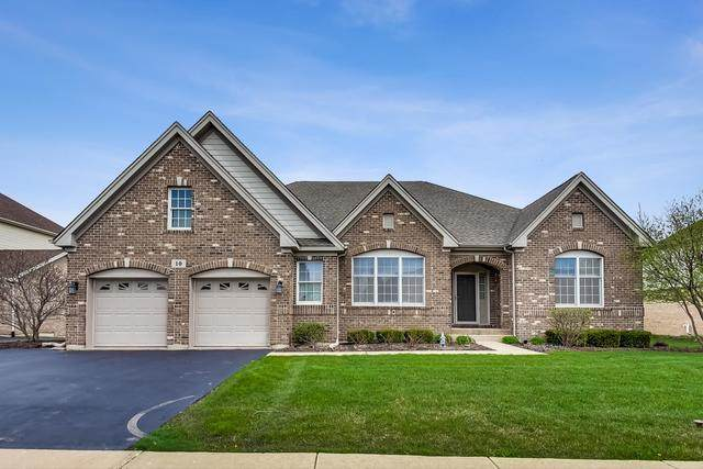 10 Tournament Drive S, Hawthorn Woods, IL 60047 (MLS #10807837) :: John Lyons Real Estate
