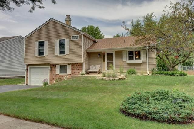 295 Hill Avenue, Bartlett, IL 60103 (MLS #10808149) :: Ani Real Estate