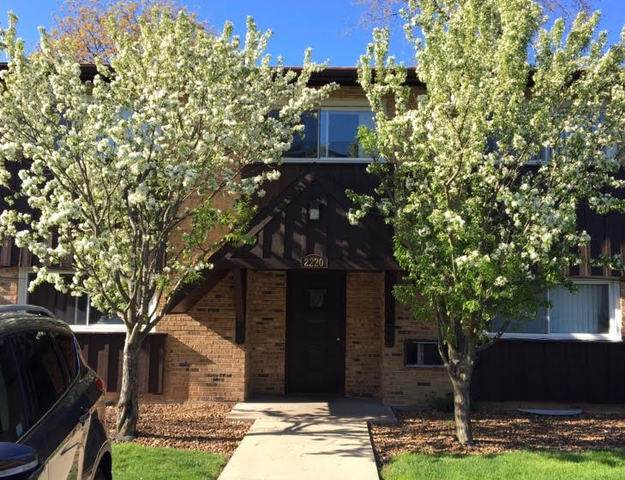 2220 Arbor Circle #25, Downers Grove, IL 60515 (MLS #10808188) :: Ani Real Estate