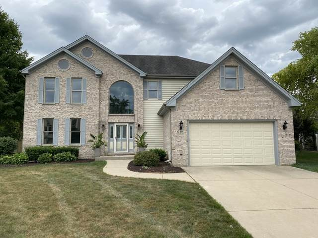 1228 N Jack Pine Court, Palatine, IL 60067 (MLS #10808235) :: Ani Real Estate